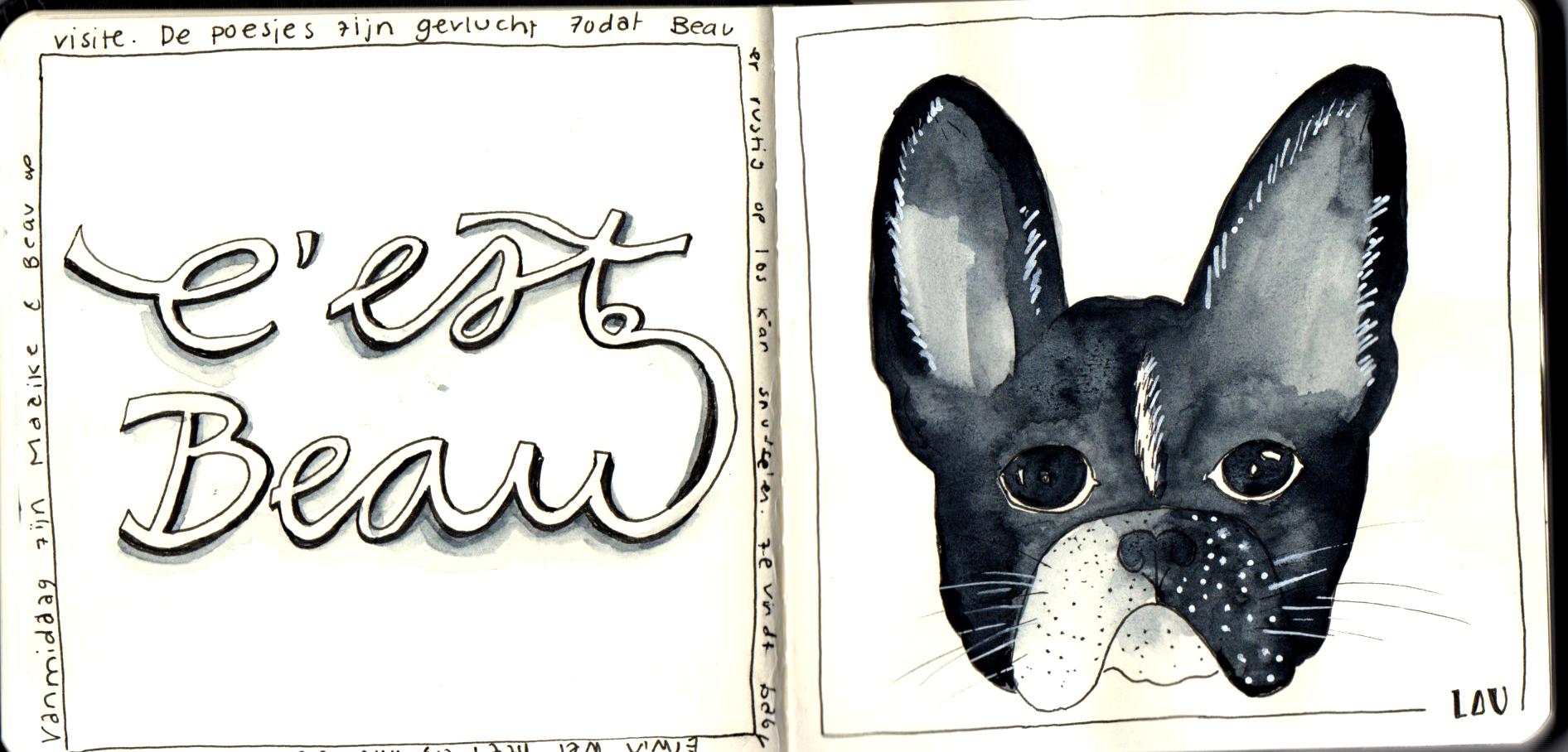 Dreamit Drawit Doit 9 Laurien Baart
